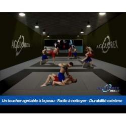 TATAMI AGGLOREX MMA